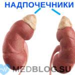 Гипокортицизм - иллюстрация болезни Аддисона