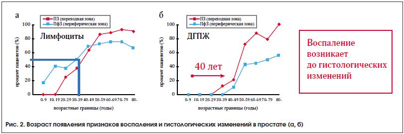Рис. 2. Возраст появления признаков воспаления и гистологических изменений в простате (а, б)