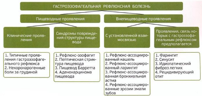 Рис. 3. Монреальская классификация ГЭРБ