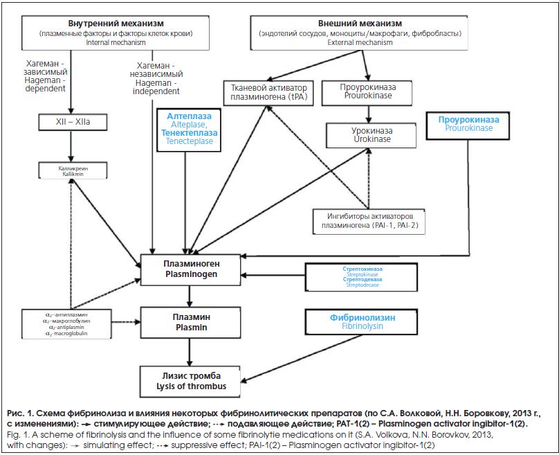 Схема фибринолиза и влияния некоторых фибринолитических препаратов