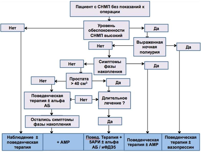 Рис. 1. Алгоритм выбора нехирургического метода лечения у пациентов с ДГПЖ [8].