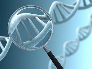 ДНК народов мира. Путешествие во времени и пространстве