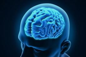 Пересадка клеток - новое решение проблемы эпилептических приступов