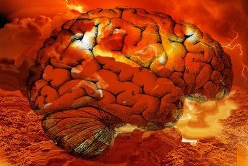 этот плавятся мозги от жары картинки специальные