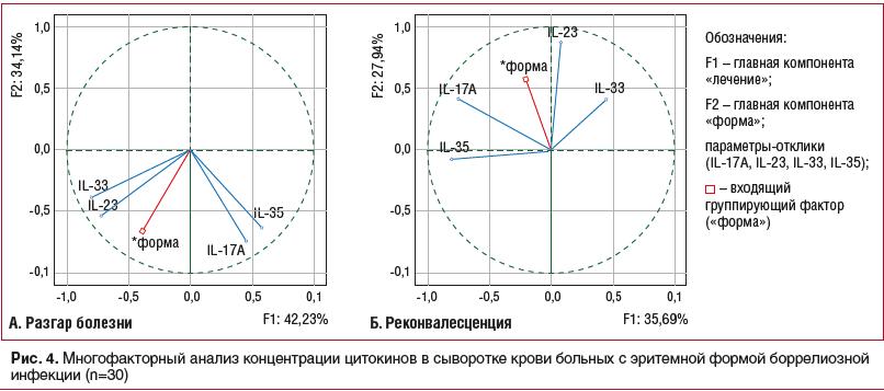 Рис. 4. Многофакторный анализ концентрации цитокинов в сыворотке крови больных с эритемной формой боррелиозной инфекции (n=30)