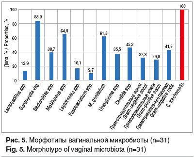 Рис. 5. Морфотипы вагинальной микробиоты (n=31)