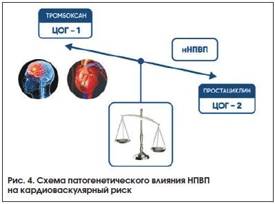 Рис. 4. Схема патогенетического влияния НПВП на кардиоваскулярный риск
