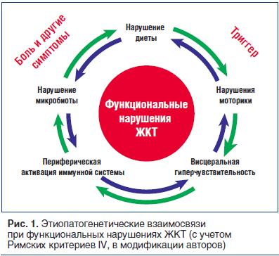 Рис. 1. Этиопатогенетические взаимосвязи при функциональных нарушениях ЖКТ (с учетом Римских критериев IV, в модификации авторов)