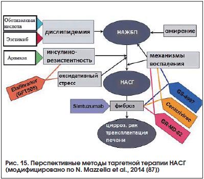Рис. 15. Перспективные методы таргетной терапии НАСГ (модифицировано по N. Mazzella et al., 2014 [87])