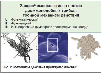 Рис. 2. Механизм действия препарата Залаин®