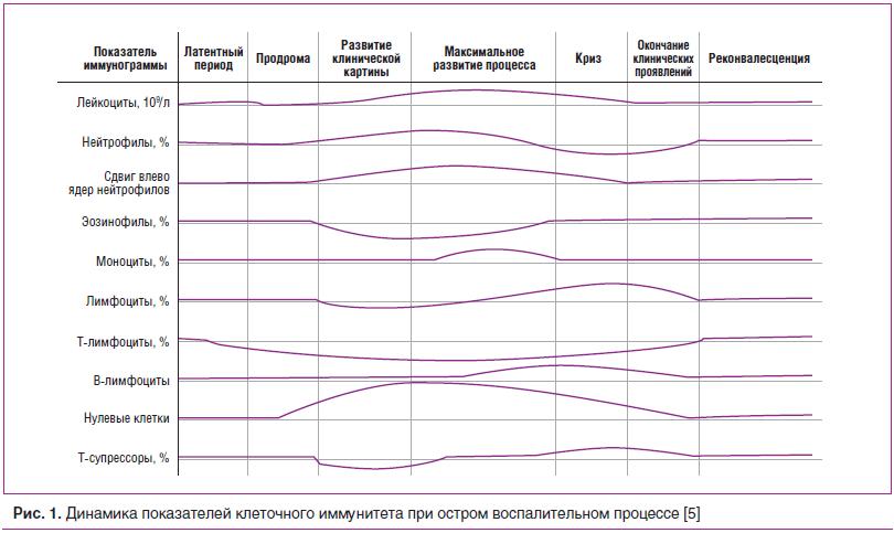 Рис. 1. Динамика показателей клеточного иммунитета при остром воспалительном процессе [5]