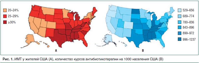 Рис. 1. ИМТ у жителей США (А), количество курсов антибиотикотерапии на 1000 населения США (В)