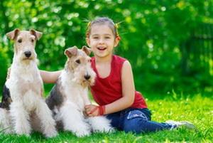 Собаки могут заменить целую лабораторию по диагностике болезней