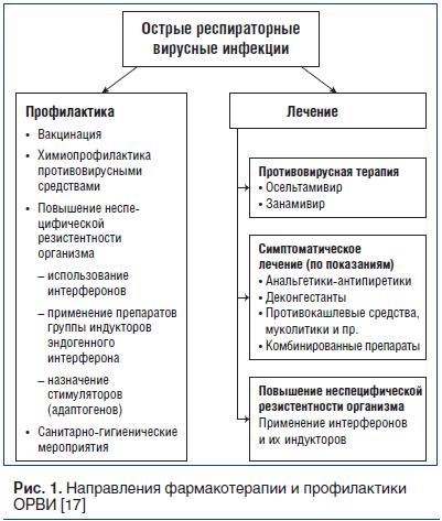 Рис. 1. Направления фармакотерапии и профилактики ОРВИ [17]
