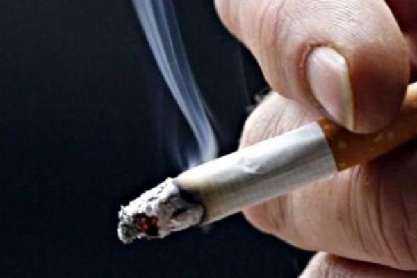 А что, если никотин защищает от COVID-19?