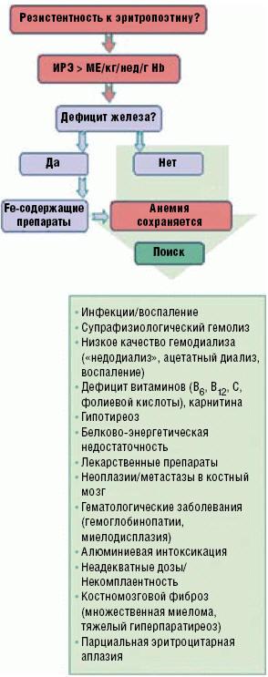 Рис. 1. Причины резистентности анемии к эритропоэз-стимулирующим препаратам у пациентов с хронической болезнью почек
