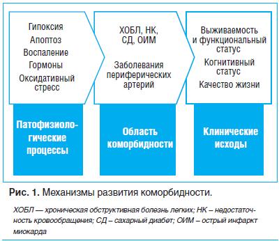 Рис. 1. Механизмы развития коморбидности