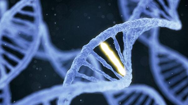 Ученые нашли мутацию, которая защищает человека от ВИЧ