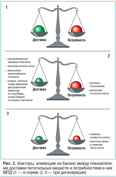 Рис. 2. Факторы, влияющие на баланс между показателями доставки питательных веществ и потребностями в них МПД (1 — в норме; 2, 3 — при дегенерации)