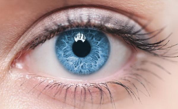 Удивительное открытие может подарить лекарства от слепоты