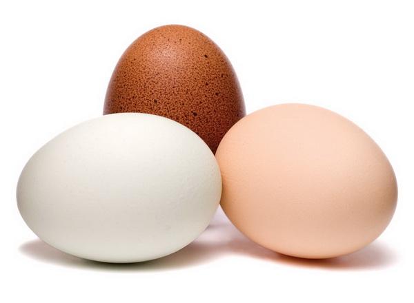 Названы отличия между яйцами с тёмной и белой скорлупой