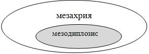 17-04-2020 14-04-14