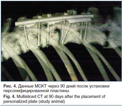 Рис. 4. Данные МСКТ через 90 дней после установки персонифицированной пластины Fig. 4. Multisliced CT at 90 days after the placement of personalized plate (study animal)