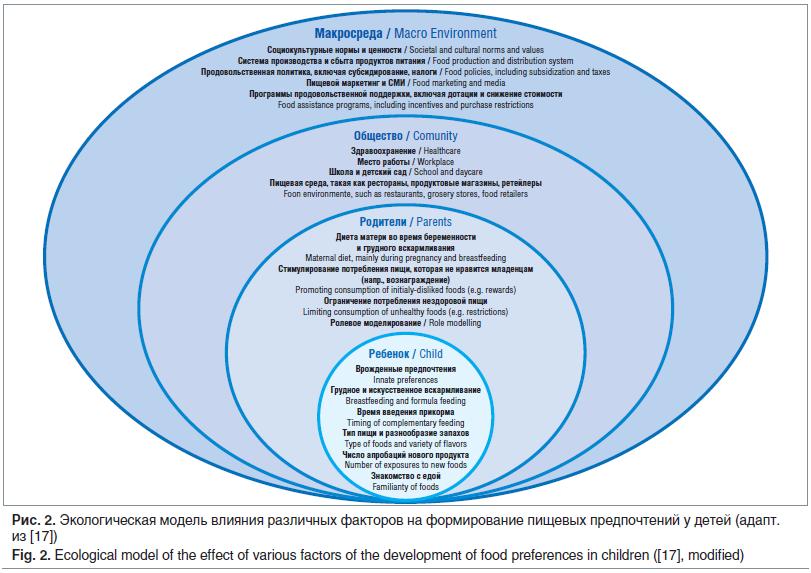 Рис. 2. Экологическая модель влияния различных факторов на формирование пищевых предпочтений у детей (адапт. из [17]) Fig. 2. Ecological model of the effect of various factors of the development of food preferences in children ([17], modified)