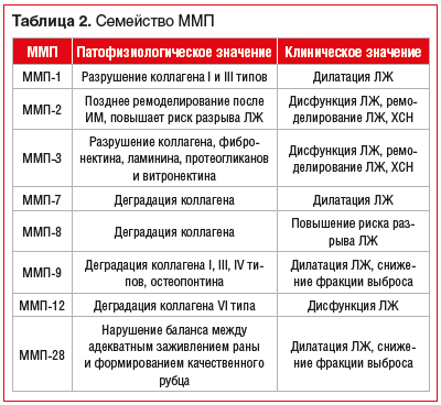 Таблица 2. Семейство ММП