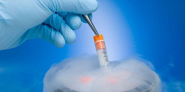 Криоконсервация яйцеклеток: способ «остановить» время