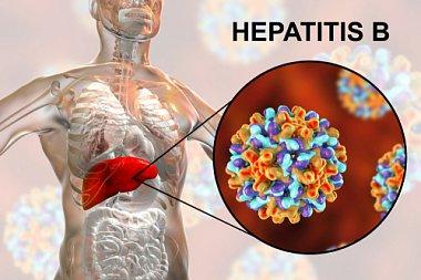 Реактивация хронического гепатита В после отмены терапии
