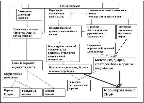 Рис. 6. Патогенез варианта ПХЭС , ассоциированного с СИБР