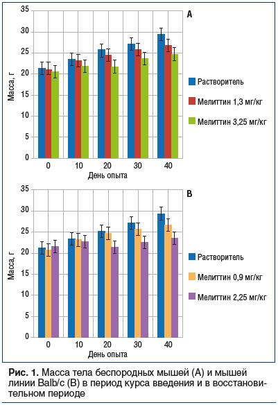 Рис. 1. Масса тела беспородных мышей (А) и мышей линии Balb/c (В) в