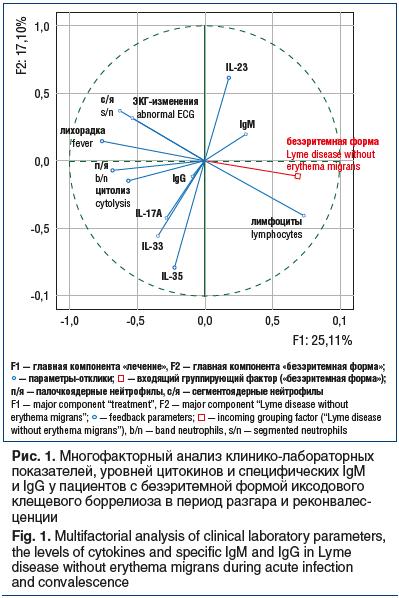 Рис. 1. Многофакторный анализ клинико-лабораторных показателей, уровней цитокинов и специфических IgM и IgG у пациентов с безэритемной формой иксодового клещевого боррелиоза в период разгара и реконвалес- ценции Fig. 1. Multifactorial analysis of clinical