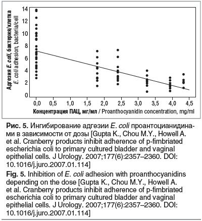 Рис. 5. Ингибирование адгезии E. coli проантоцианидина- ми в зависимости от дозы [Gupta K., Chou M.Y., Howell A. et al. Cranberry products inhibit adherence of p-fimbriated escherichia coli to primary cultured bladder and vaginal epithelial cells. J Urolo