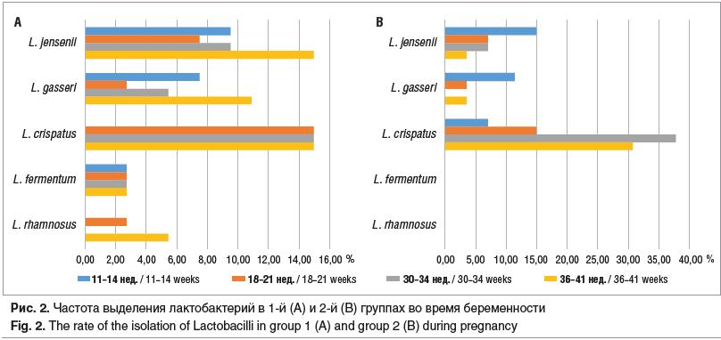 Рис. 2. Частота выделения лактобактерий в 1-й (A) и 2-й (B) группах во время беременности Fig. 2. The rate of the isolation of Lactobacilli in group 1 (A) and group 2 (B) during pregnancy