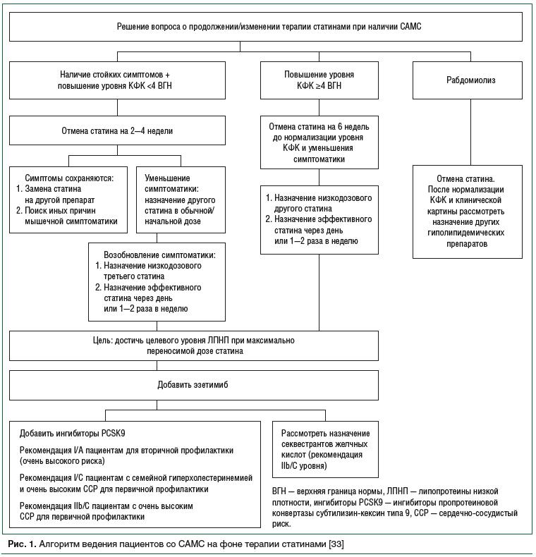 Рис. 1. Алгоритм ведения пациентов со САМС на фоне терапии статинами [33]
