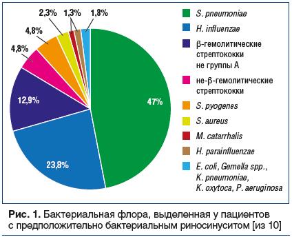 Рис. 1. Бактериальная флора, выделенная у пациентов с предположительно бактериальным риносинуситом [из 10]