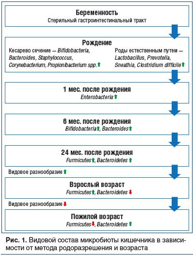 Рис. 1. Видовой состав микробиоты кишечника в зависимости от метода родоразрешения и возраста