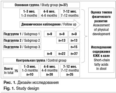 Рис. 1. Дизайн исследования Fig. 1. Study design