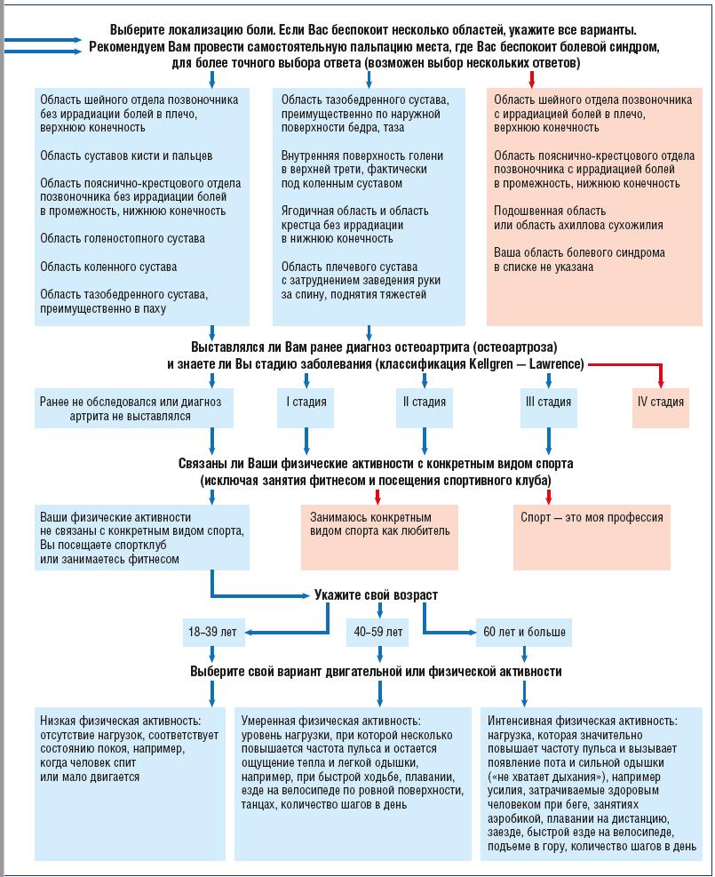 Рис. 1. Графическое представление протокола опроса и распределения пациентов на группы по степени подготовленности к физическим нагрузкам (на примере гонартроза)