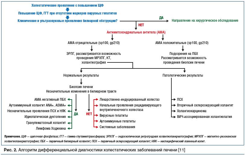 Рис. 2. Алгоритм дифференциальной диагностики холестатических заболеваний печени [11]