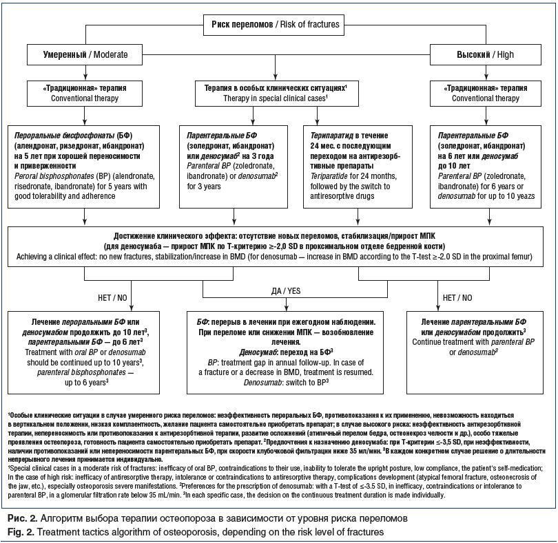 Рис. 2. Алгоритм выбора терапии остеопороза в зависимости от уровня риска переломов Fig. 2. Treatment tactics algorithm of osteoporosis, depending on the risk level of fractures