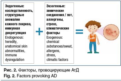 Рис. 2. Факторы, провоцирующие АтД Fig. 2. Factors provoking AD