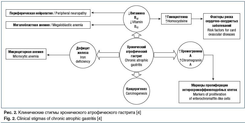 Рис. 2. Клинические стигмы хронического атрофического гастрита [4] Fig. 2. Clinical stigmas of chronic atrophic gastritis [4]